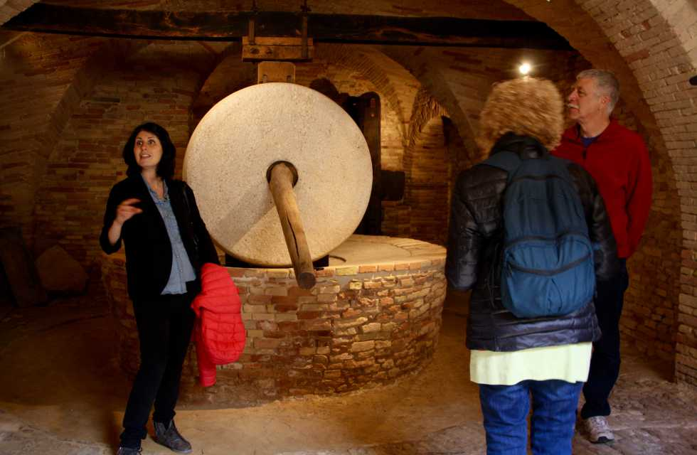 Private Italy Tours Olive oil Museum in Abruzzo, Italy
