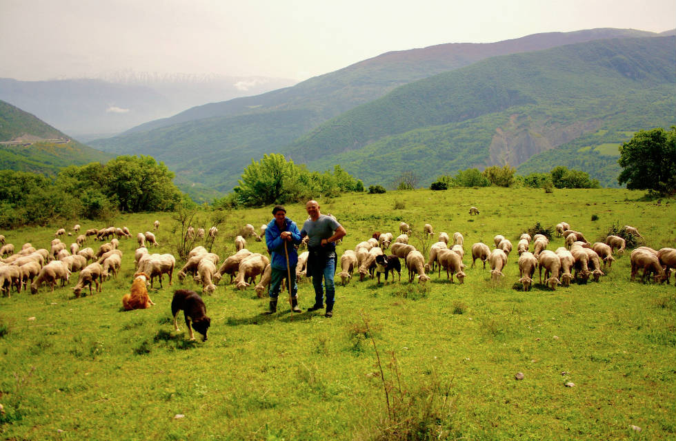 A shepherd and his flock in the Majella National Park on our Italy travel tours