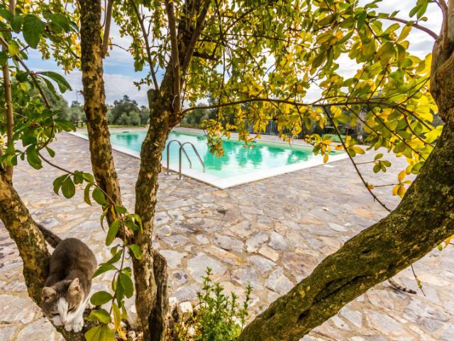 Basilicata-agritourismo-accommodation-Italian-Provincial-Tours