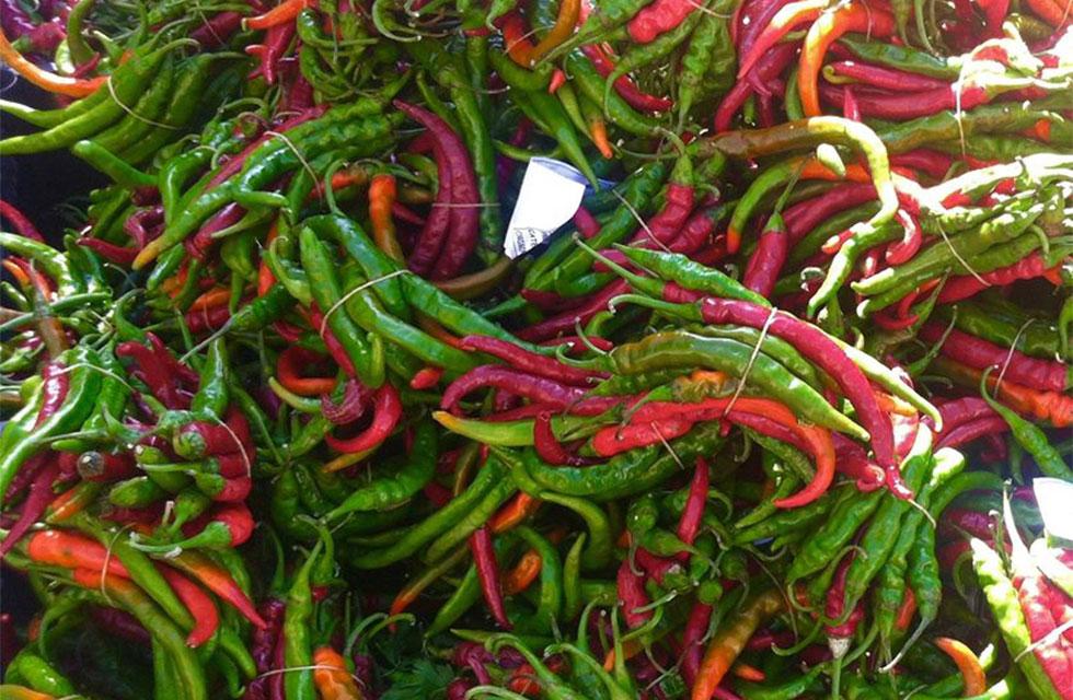 Italian Provincial Tours Markets Tour chilies