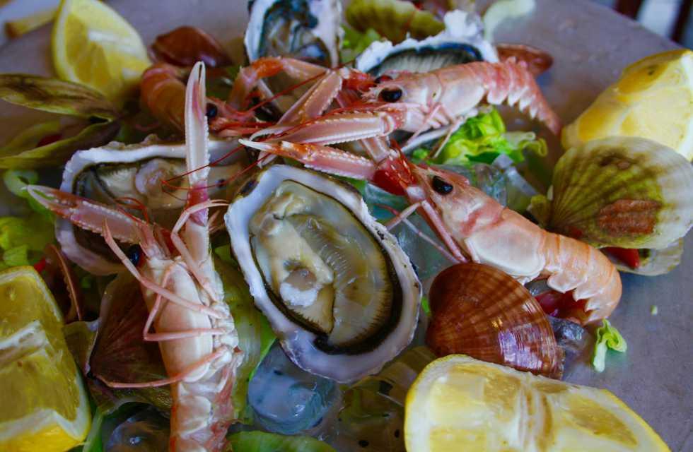 Italy food Tours Crudo seafood in Vasto, Abruzzo Italy