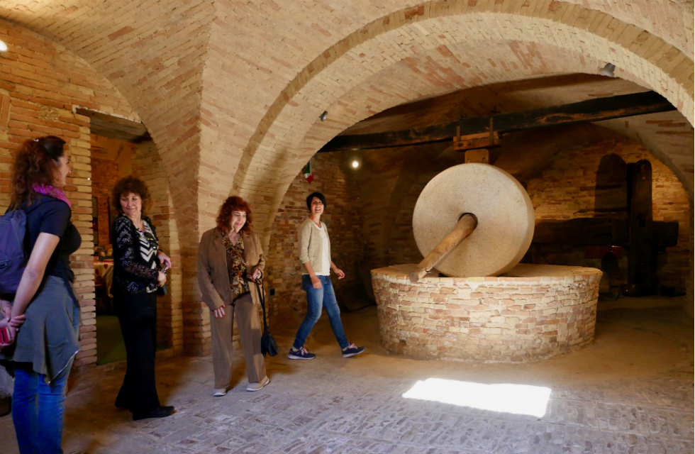 Cantinarte-olive-oil-tours-Italy-Abruzzo
