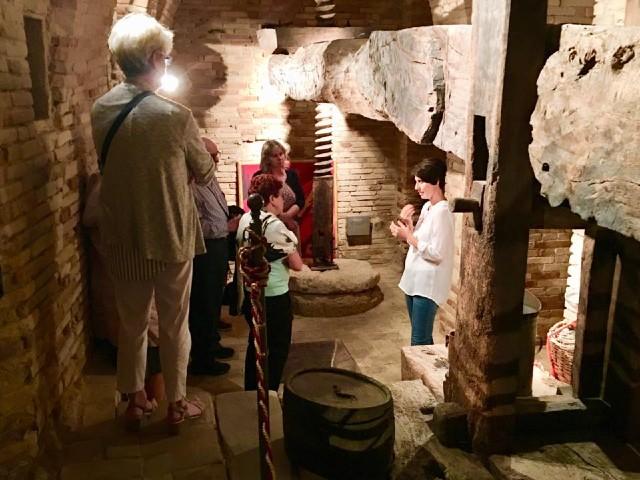 olive-oil-tours-Abruzzo-Italy