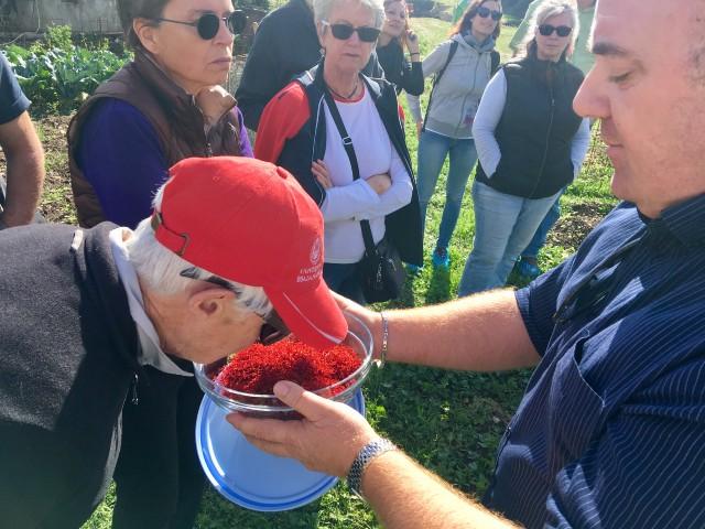 saffron-food-tour-Italy-Navelli-Abruzzo