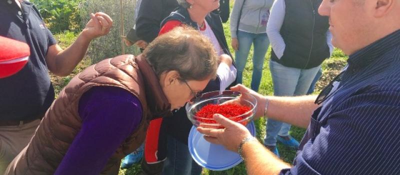 saffron-food-tour-Italy-Abruzzo